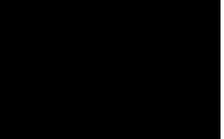 Stil-logo200h